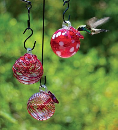 red glass humingbird feeders
