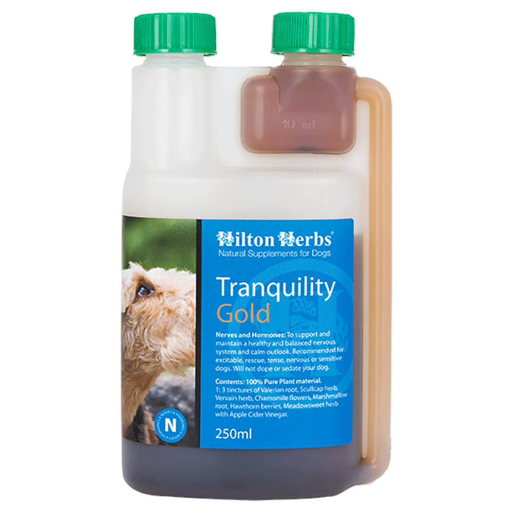 Hilton Herbs Tranquility Gold for Dogs - 500 ml