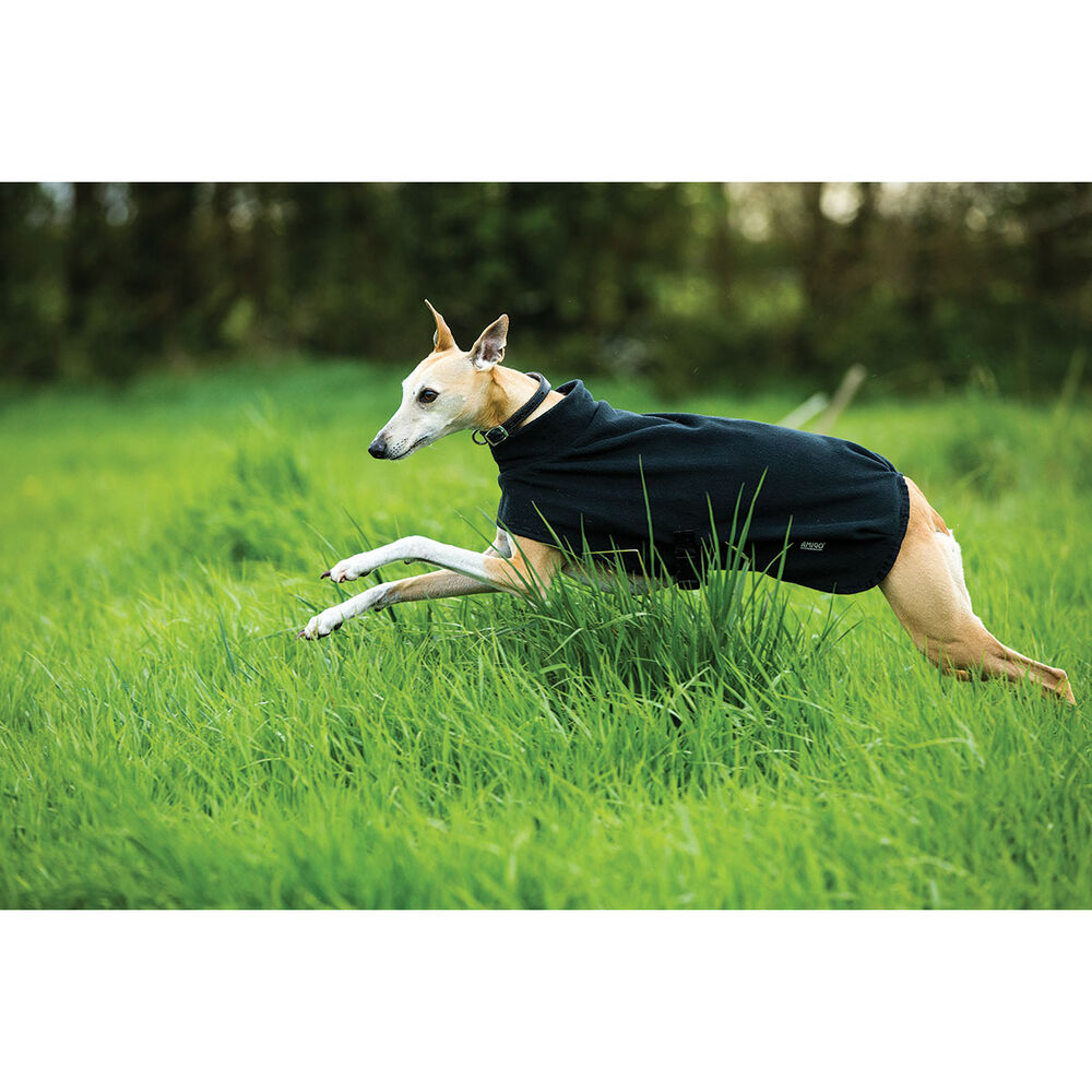 Horseware Amigo Fleece Dog Rug L