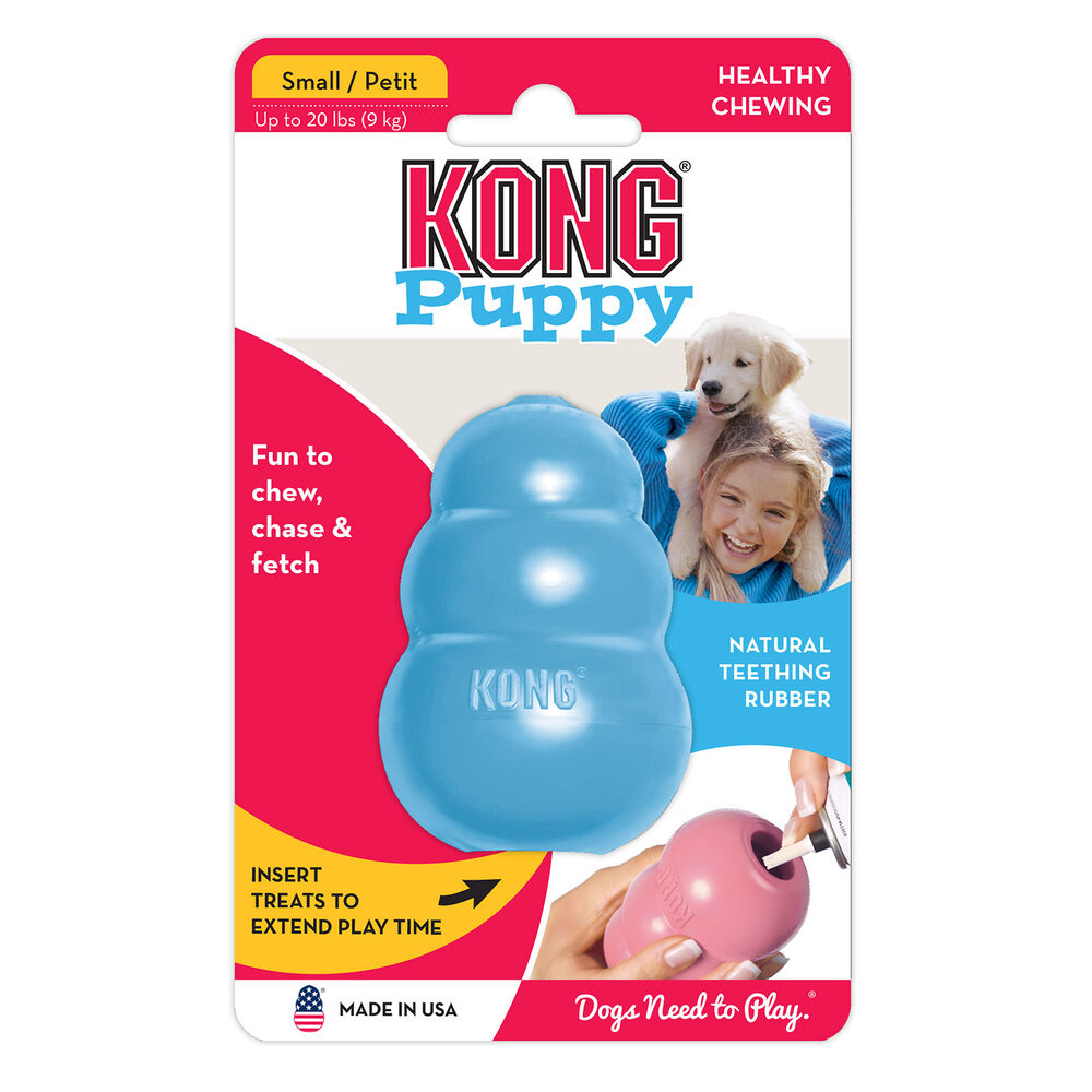 Kong Puppy Small (assorted)