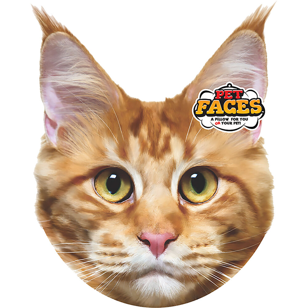 Pet Faces Maine Coon Cat