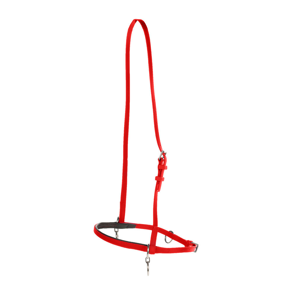 Finntack Pro Synthetic Head Halter with Martingale Ring