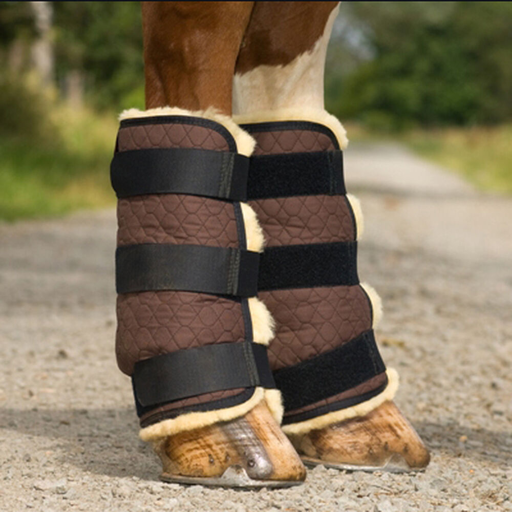 Christ Boots, hindlegs