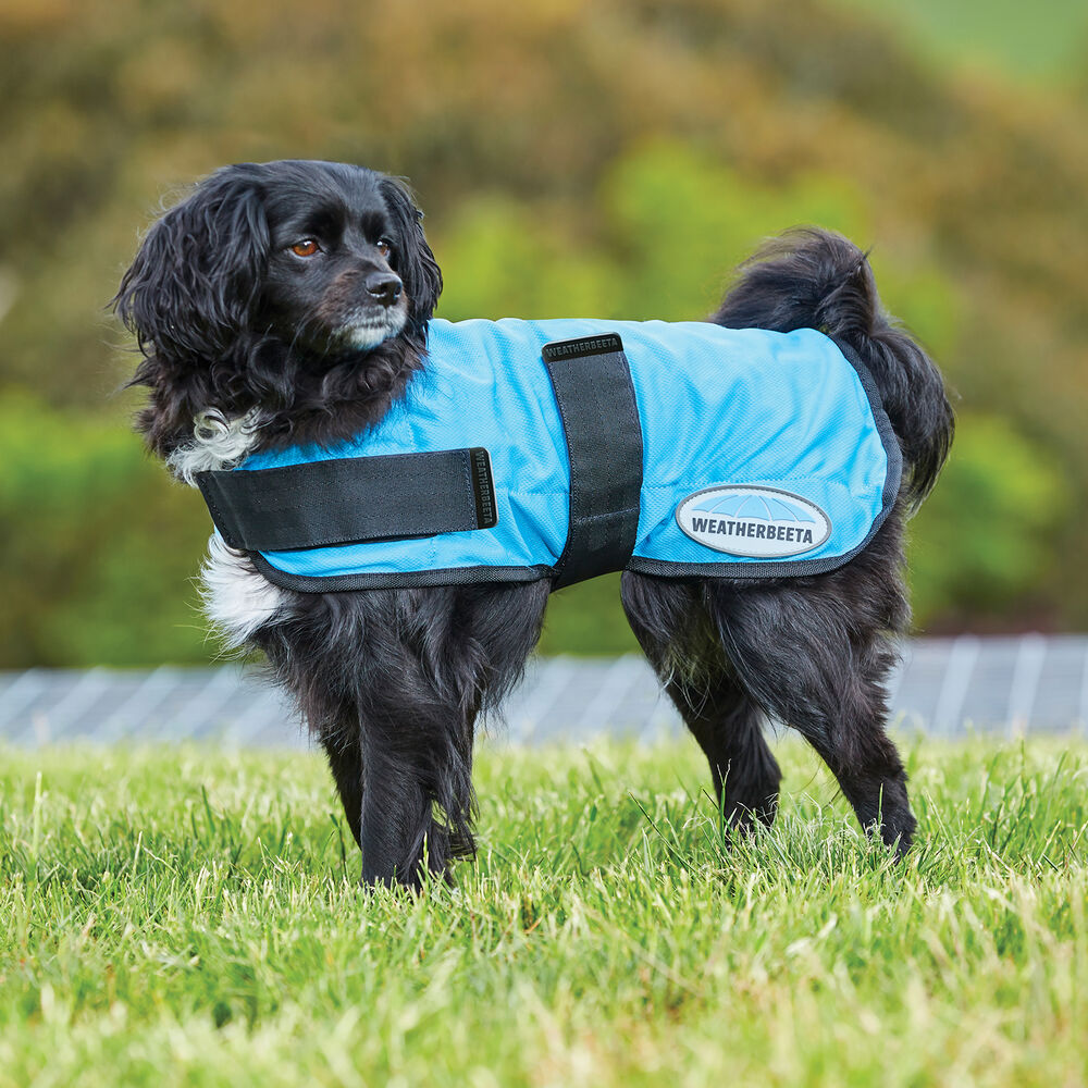 Weatherbeeta Therapy-tec Cooling Dog Coat (25-40 cm)