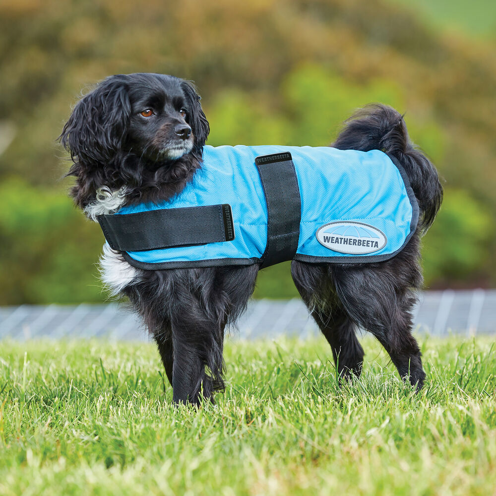 Weatherbeeta Therapy-tec Cooling Dog Coat (45-80cm)