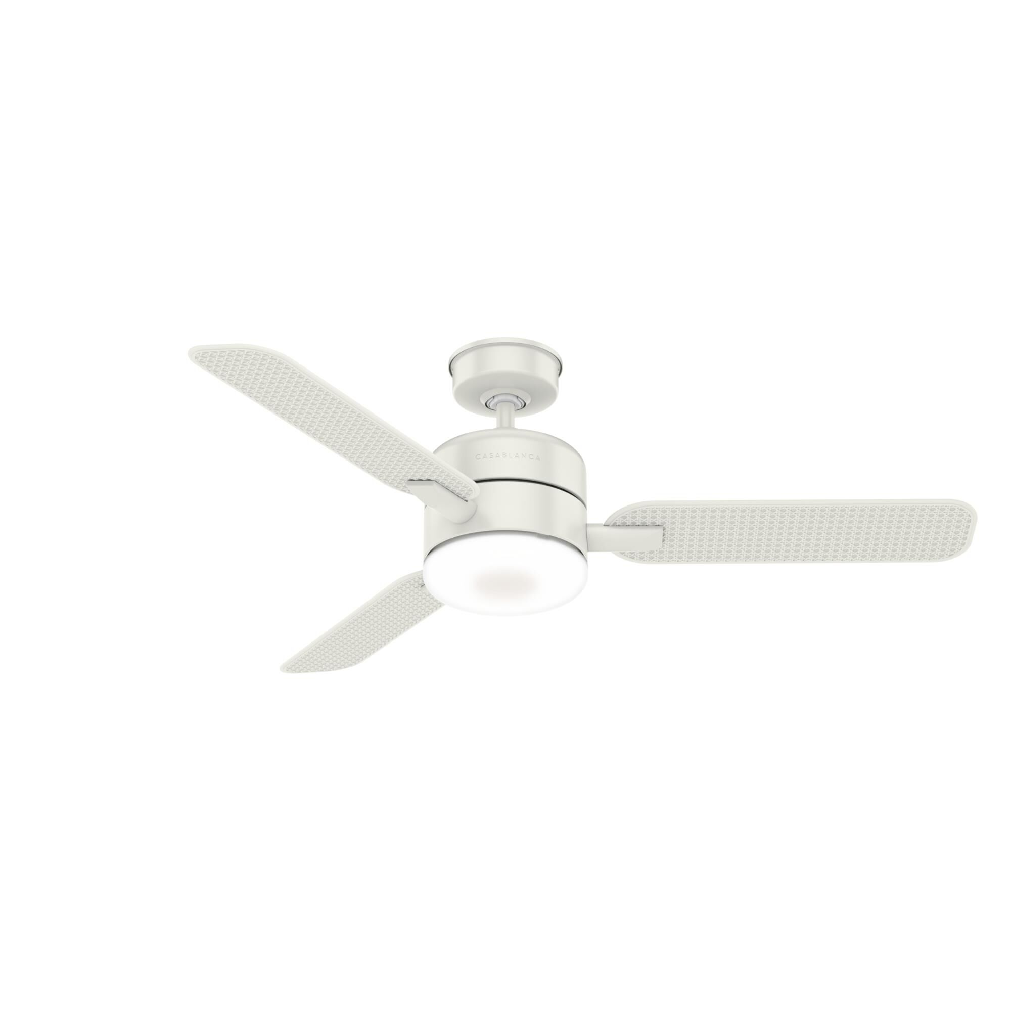 Casablanca Fan Company Paume Outdoor Rated 54 Inch Ceiling Fan With Light Kit Paume - 59427 - Modern Contemporary