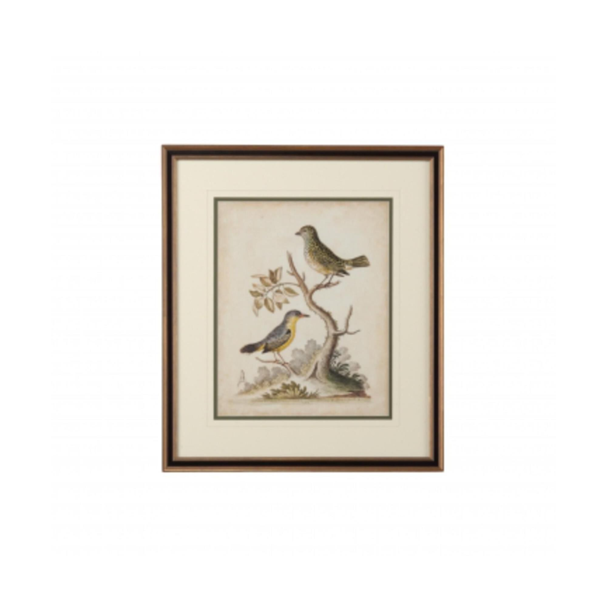 Chelsea House EDWARDS BIRD PAIRS VII Print Edwards Bird Pairs Vii - 386429 (2032592) photo