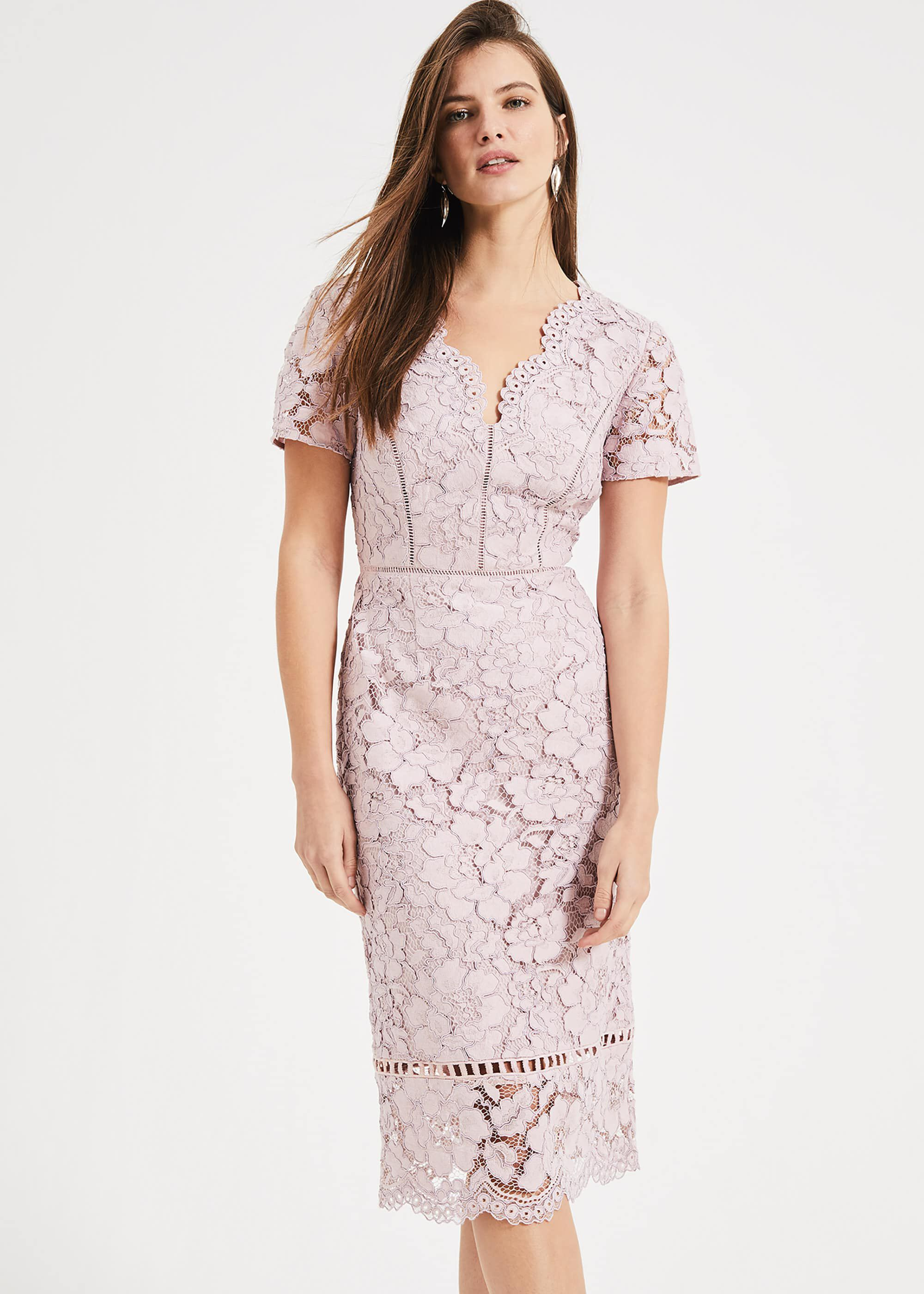 Phase Eight Trinity Corded Lace Dress, Pink, Shift, Occasion Dress