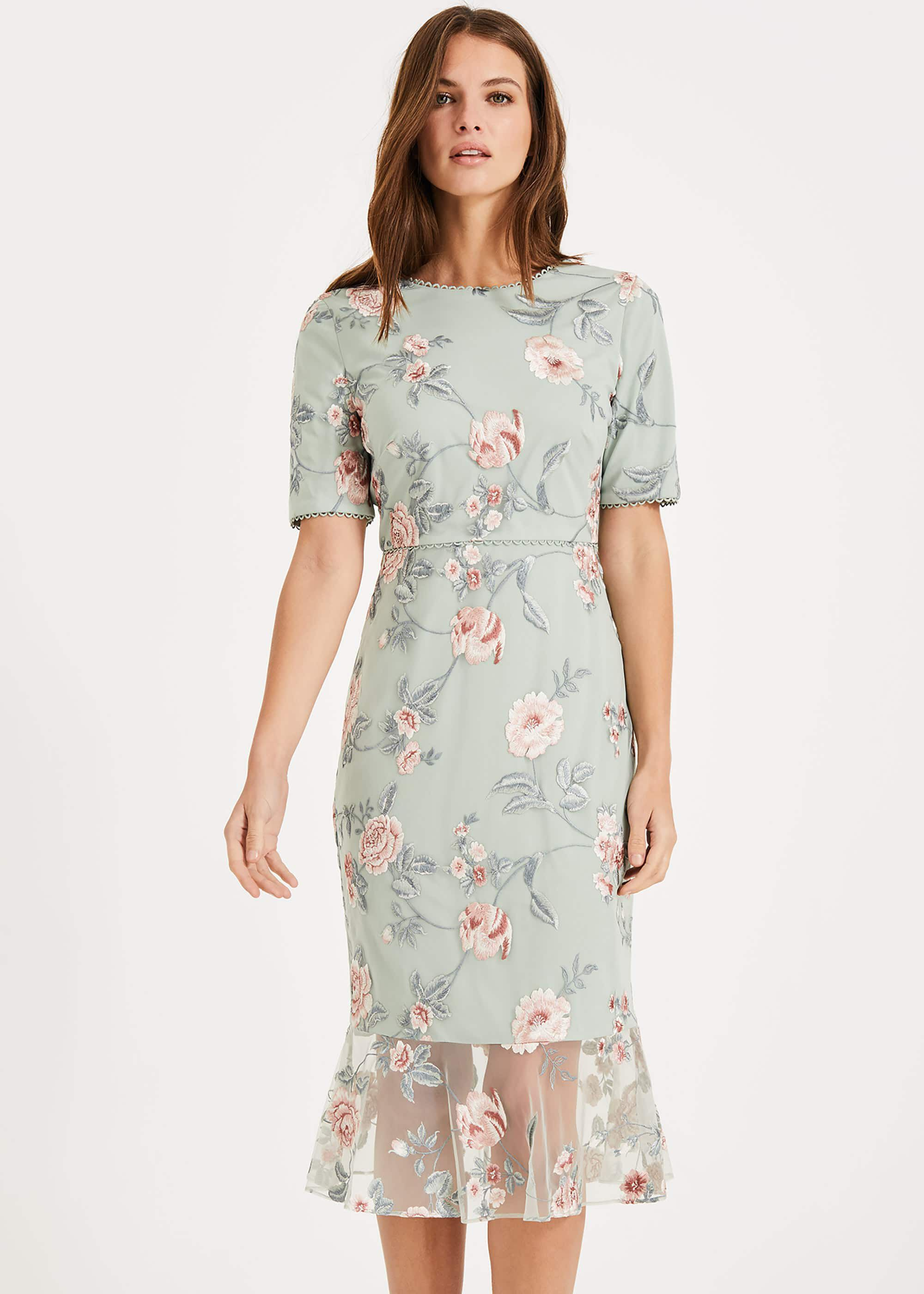 Phase Eight Alissa Embroidered Dress, Green, Shift, Occasion Dress