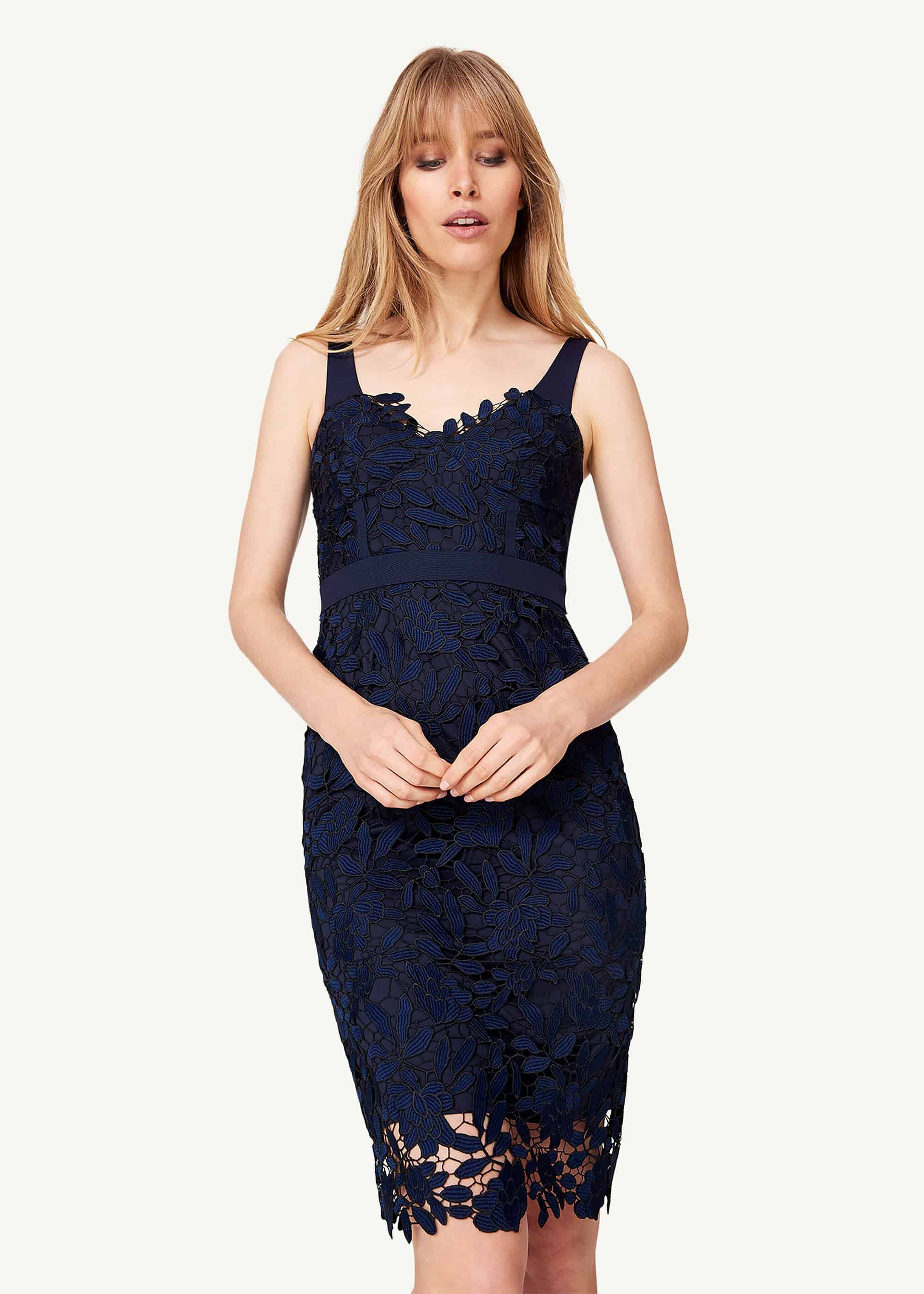 Damsel in a Dress Abella Boned Lace Midi Dress, Blue